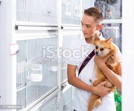 teen boy with dog is looking to cages with a different pets  in pet shop