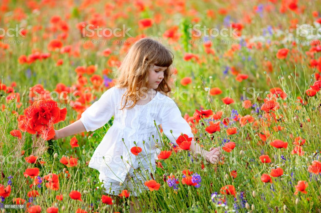 teen girl among a field of poppies stock photo