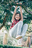 Pretty girl playfully hangs on a tree branch