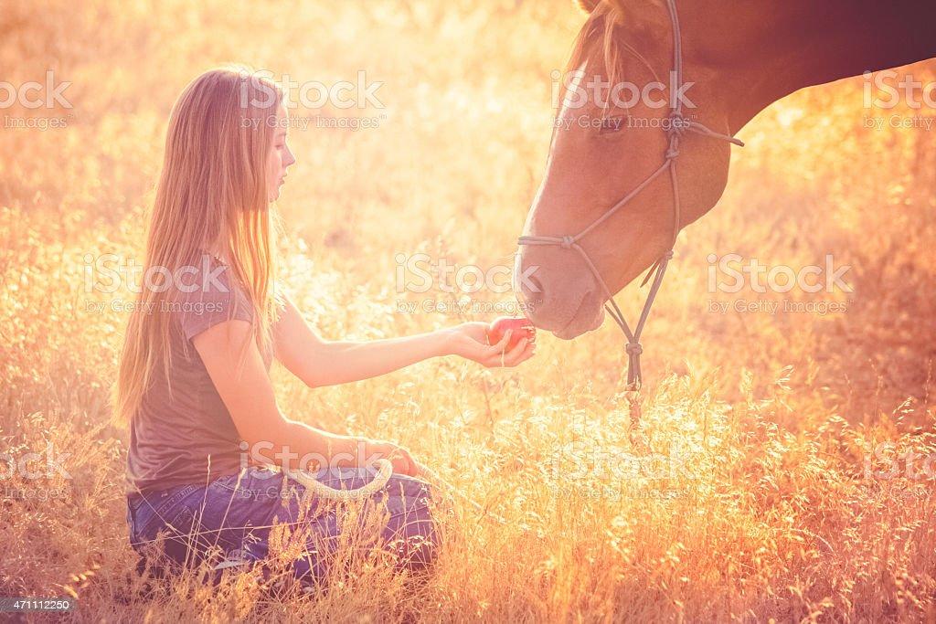 Teen girl feeding apple to horse in sunny grassy pasture stock photo