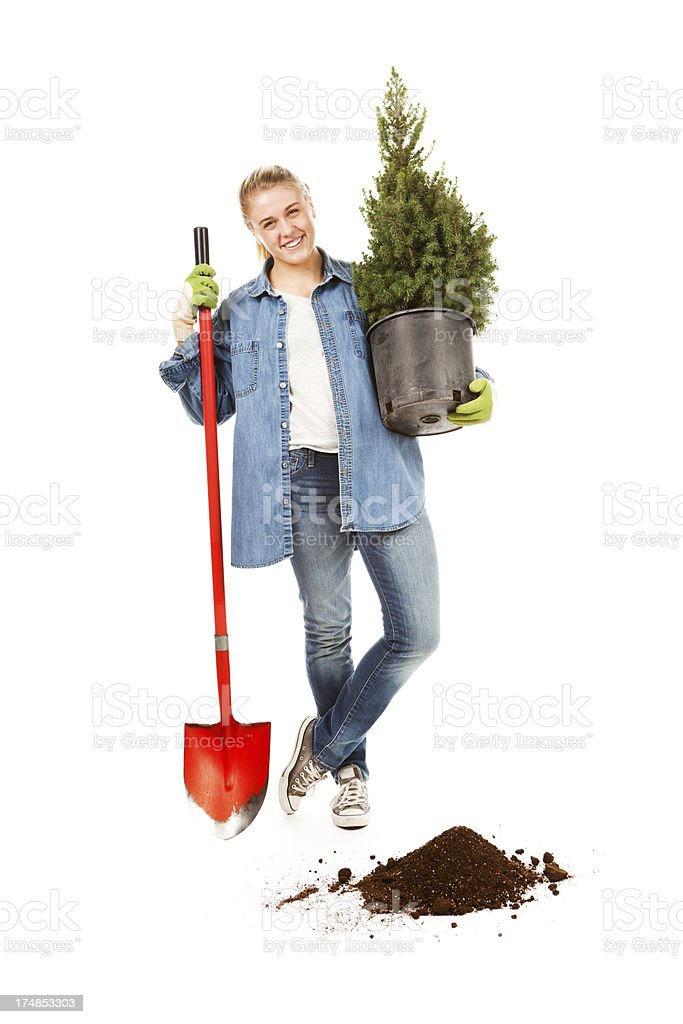 Teen Girl Planting a Seedling Evergreen Tree on White Background royalty-free stock photo
