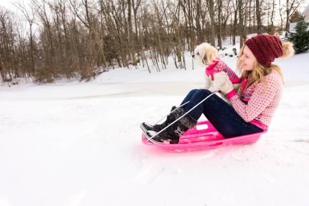 Teen girl sledding with little dog picture id934566530?b=1&k=6&m=934566530&s=612x612&w=0&h=ujujc wlhkgmxwkagqnrwdktgpf0etyshqidrrvrshe=