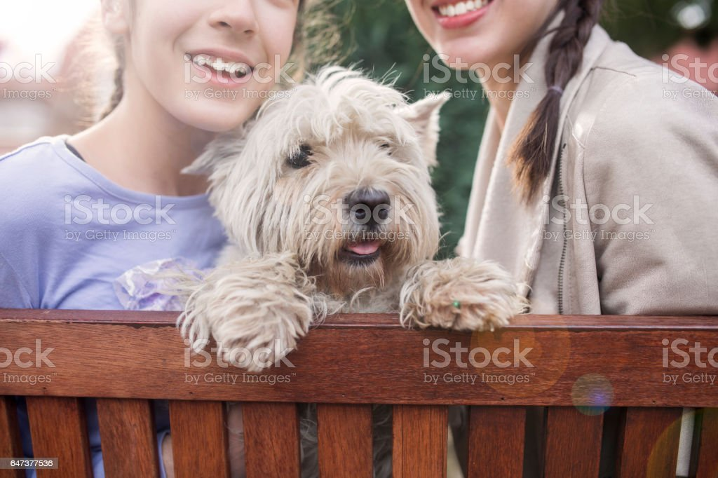 Two teen girls with hearing aid have a fun with cute white dog