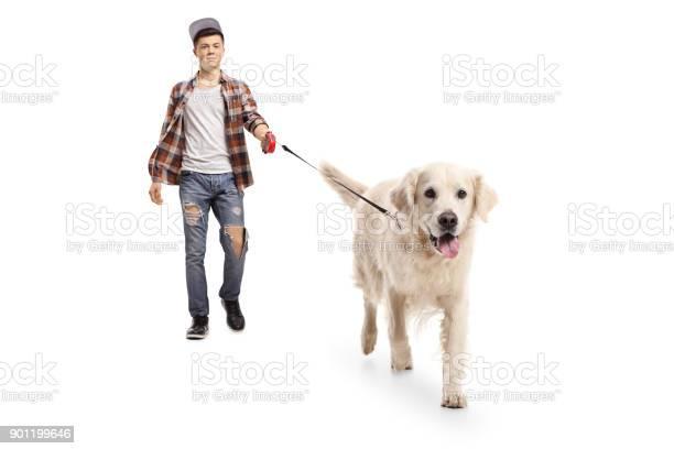 Teen hipster walking a dog picture id901199646?b=1&k=6&m=901199646&s=612x612&h=asycqm4snfm9 7uatdvjikm3y b6arl9zezxmxzjuxm=