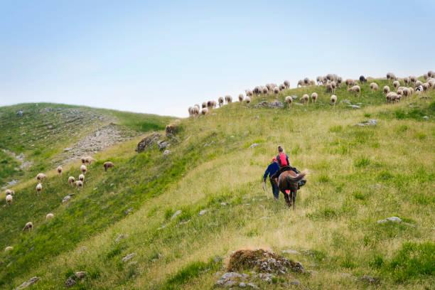 Adolescente a caballo en las montañas de Abruzzo, Italia - foto de stock