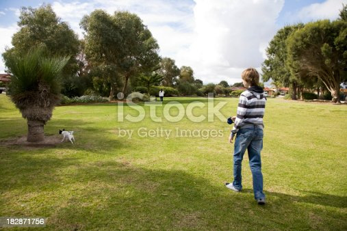 A teenage boy walking his dog in a park.