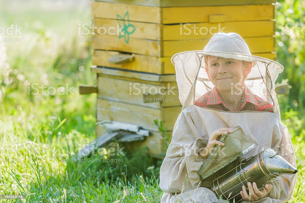 Teenage beekeeper with painted wooden beehives stock photo