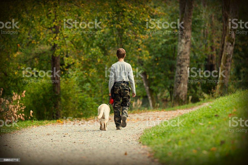 Teenage boy and his rescue dog labrador retriever photo libre de droits