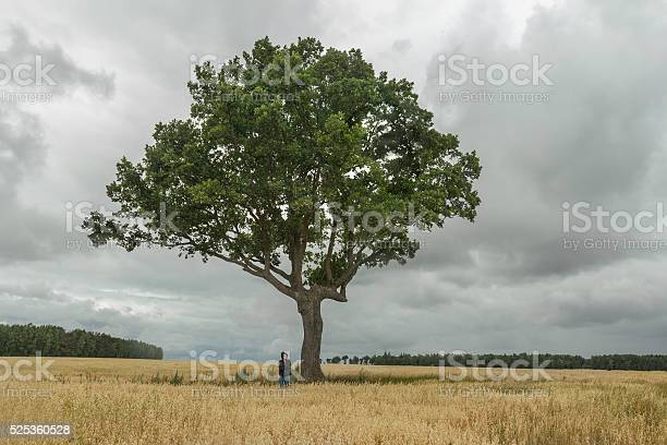 Photo of Teenage boy and huge branchy oak tree at stormy background