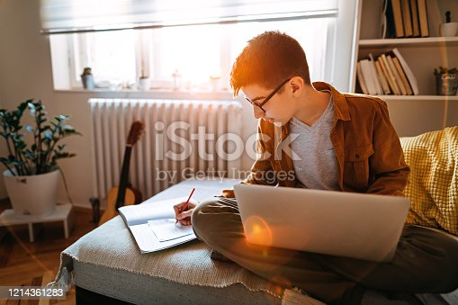 Teenage boy sitting on sofa, using laptop and writing notes during online classes.