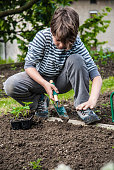 Teenage Boy Planting Seedlings in Garden