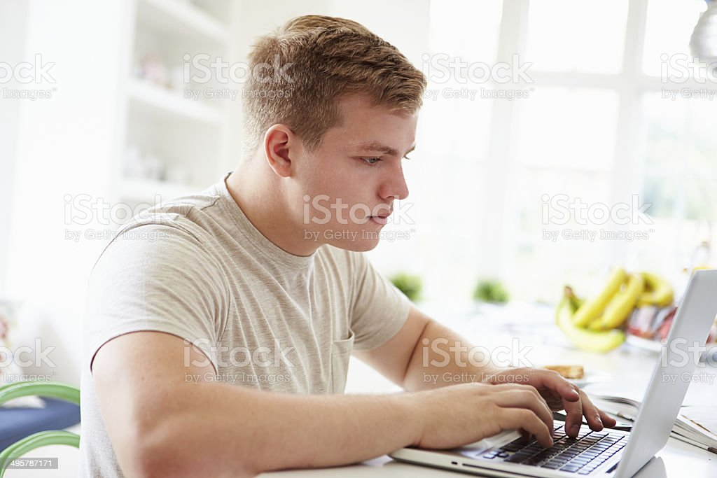 Teenage Boy Studying On Laptop At Home stock photo