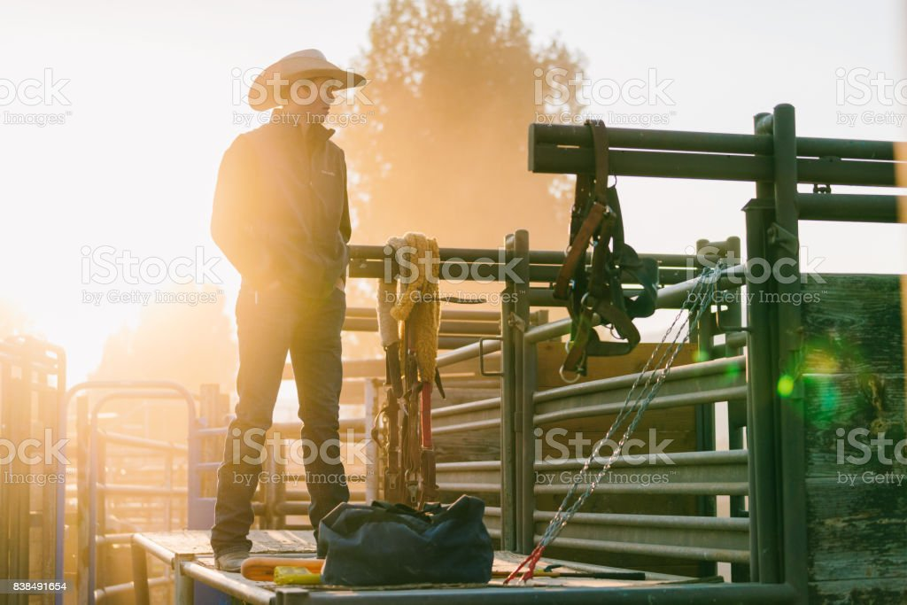Teenage cowboy pensively looking into the distance stock photo