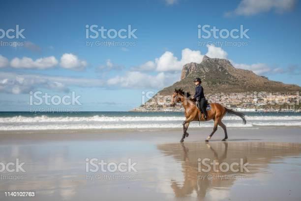 Teenage girl cantering on brown horse at the beach picture id1140102763?b=1&k=6&m=1140102763&s=612x612&h=jhxr2b tvf2paun5qjscm7kwuncb9qv5yiy3x9wszhk=
