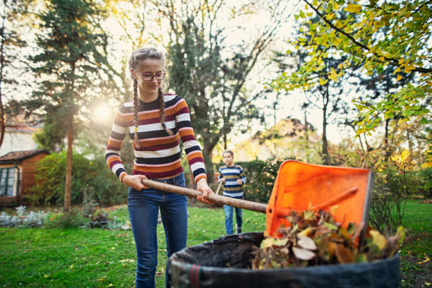 Teenage girl composting autumn leaves stock photo
