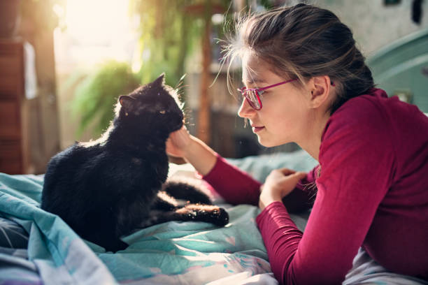 Teenage girl playing with her cat picture id1182449345?b=1&k=6&m=1182449345&s=612x612&w=0&h=mnaq4hgha1oyo5ehjsv7bg4ijzevwrwbamdldvukvgy=