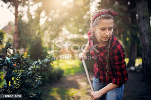 Teenage girl helping to clean the back yard after winter. The girl is raking the garden. Nikon D850