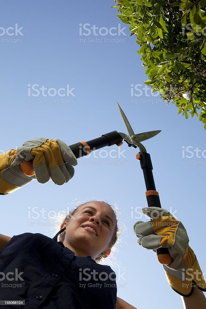 Teenage girl using hedge trimmers on a bush royalty-free stock photo