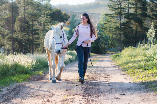 Teenage girl walking next to a white Boerperd horse on a dirt road stock photo