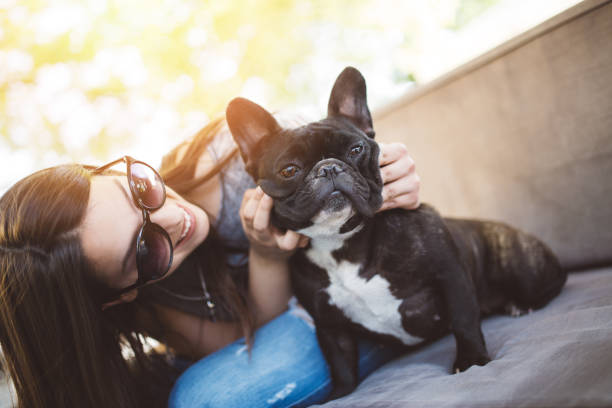 Teenage girl with dog Beautiful teenage girl sitting in cafe restaurant with her adorable French bulldog puppy. People and dogs theme. french bulldog stock pictures, royalty-free photos & images