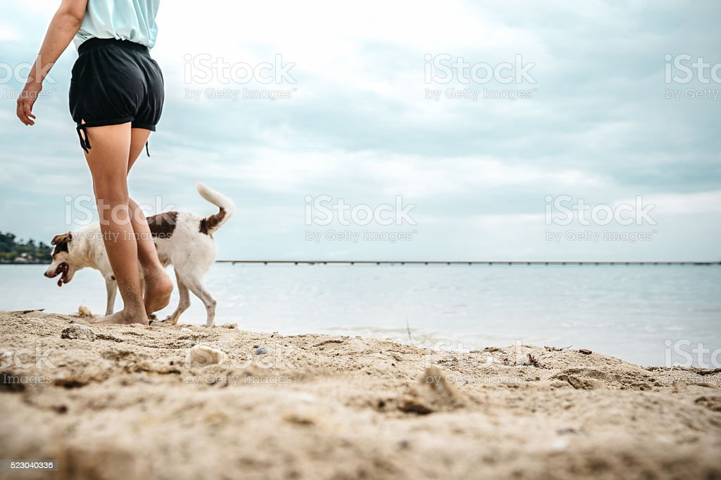 teenage girl with mixed blood dog walking at beach stock photo