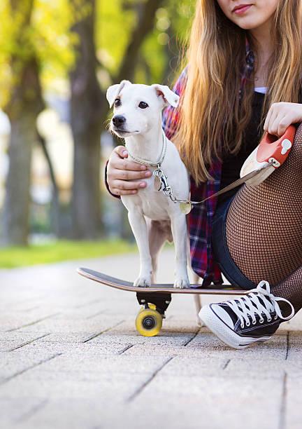 teenager-mädchen mit skateboard und hund - hunde strumpfhosen stock-fotos und bilder
