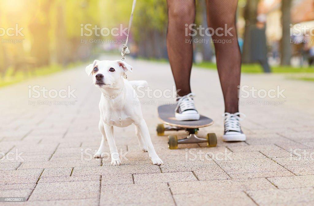Teenage girl with skateboard and dog stock photo