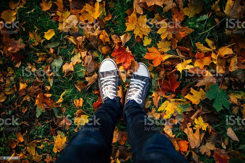 Teenage legs in sneakers in autumn leaves – Foto