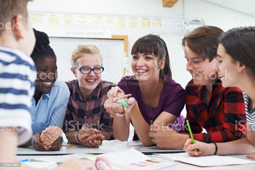 Teenage Students With Teacher In Biology Class stock photo