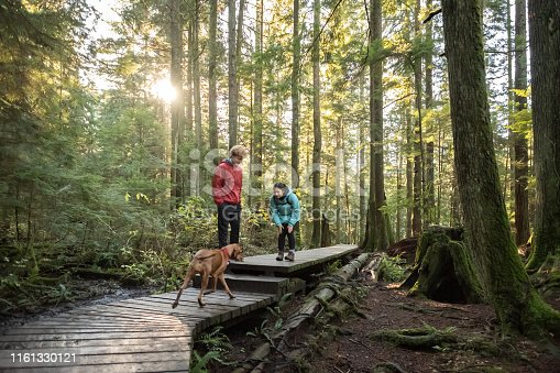 Eurasian teen girl, Caucasian teen boy, and pet Vizsla dog in Seymour Demonstration Forest, North Vancouver, British Columbia, Canada