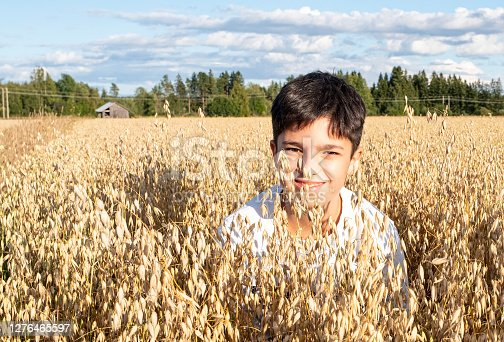 A teenager 11-14 years old, oriental type, looks out from ears of oats in an oat field. The boy smiles and looks at the lens.