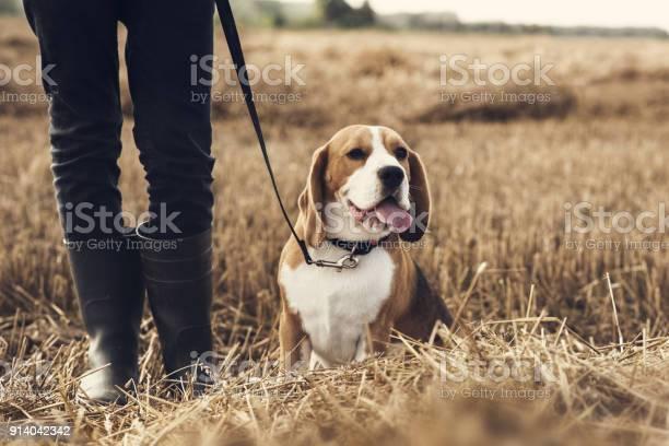 Teenager boy and his dog walking in the field picture id914042342?b=1&k=6&m=914042342&s=612x612&h=dzebv9vt9ffcwybmw4zxnd52yjaje4qbtbfh45cu8ka=