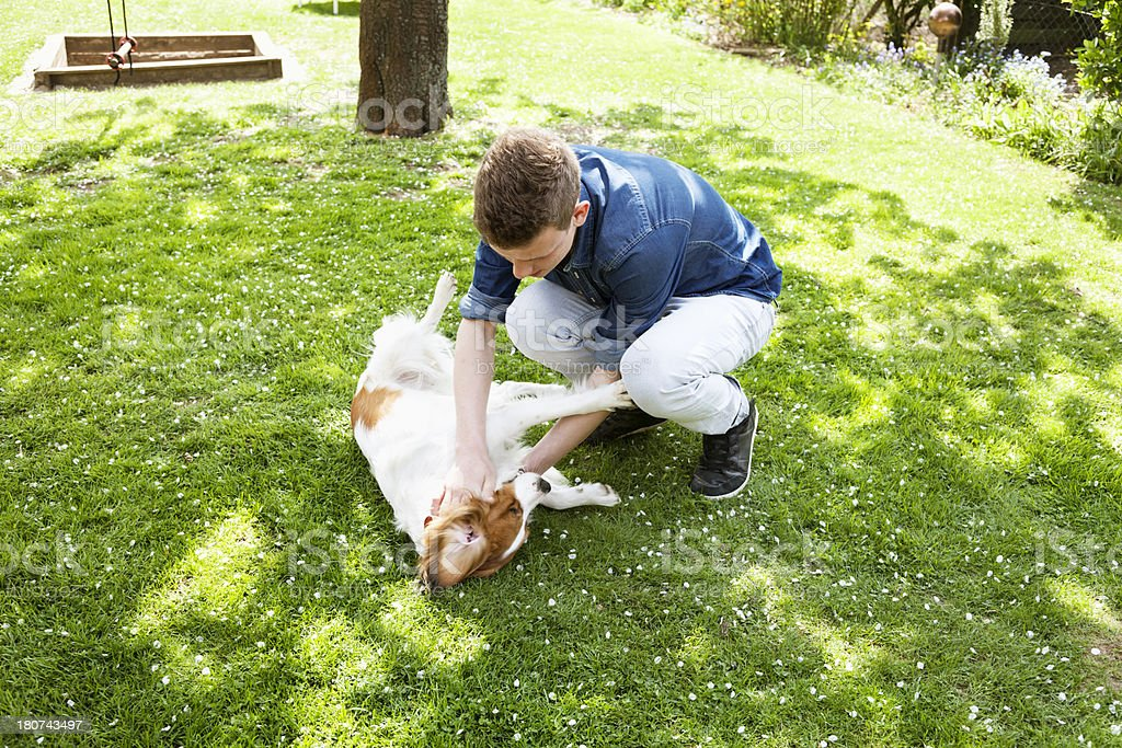 teenager boy playing with dog in garden royalty-free stock photo
