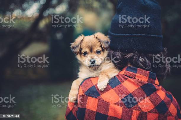 Teenager girl holding a cute puppy picture id467325244?b=1&k=6&m=467325244&s=612x612&h=sb35mqtuje7zcxs3qyt0mgvvrm4ikr8ornwsduruaae=