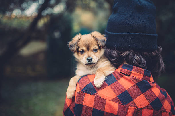 Teenager girl holding a cute puppy picture id467325244?b=1&k=6&m=467325244&s=612x612&w=0&h= vhzcgpm0ggcxhslvomhrm8n gsfgfigvj deflxhbi=