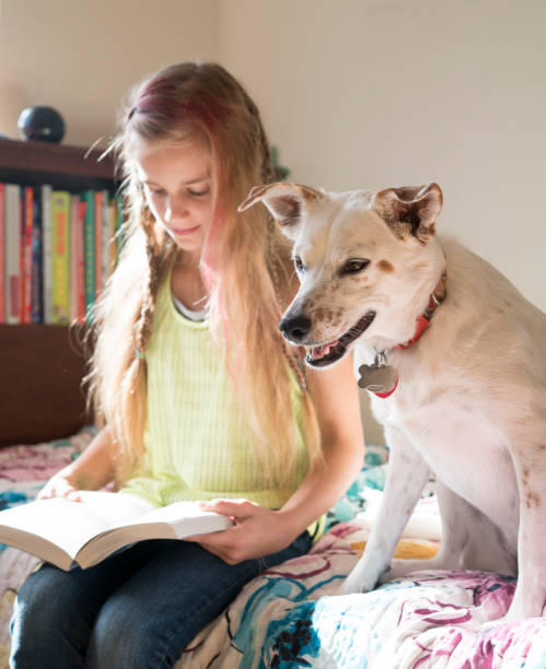Teenager girl reading the book with dog stock photo