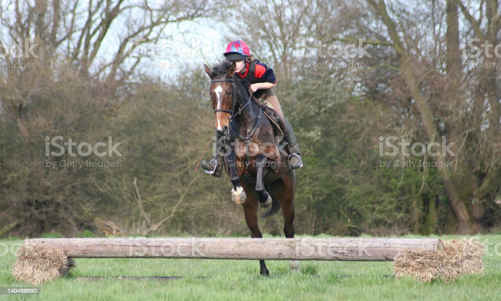 Teenager Jumping Horse Over Telegraph Pole Stock Photo Download Image Now Istock