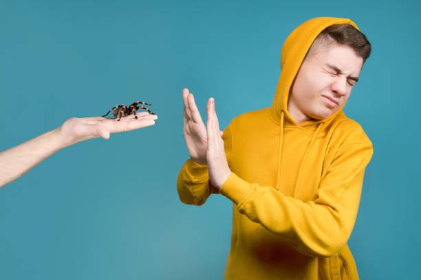 Un adolescente muestra asco y se niega a una araña grande, que se sostiene por su mano - foto de stock