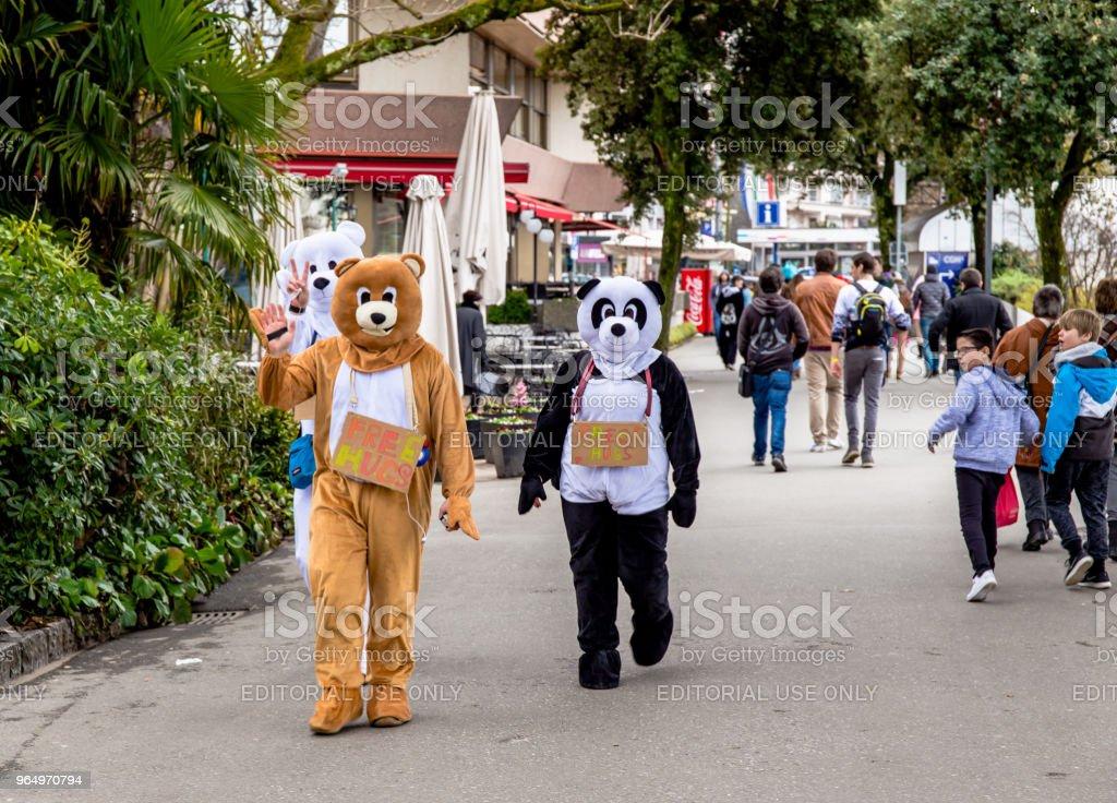 Teenagers dressed in Panda costumes stock photo