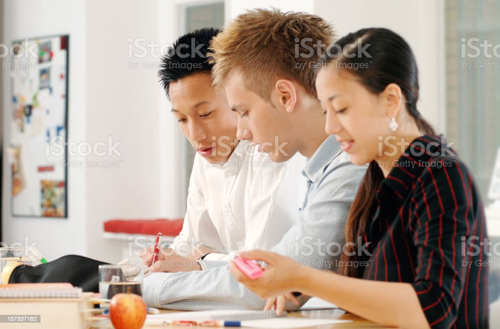 Teenagers working Together royalty-free stock photo