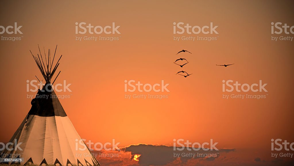 teepee at sunset with flock of large birds stock photo