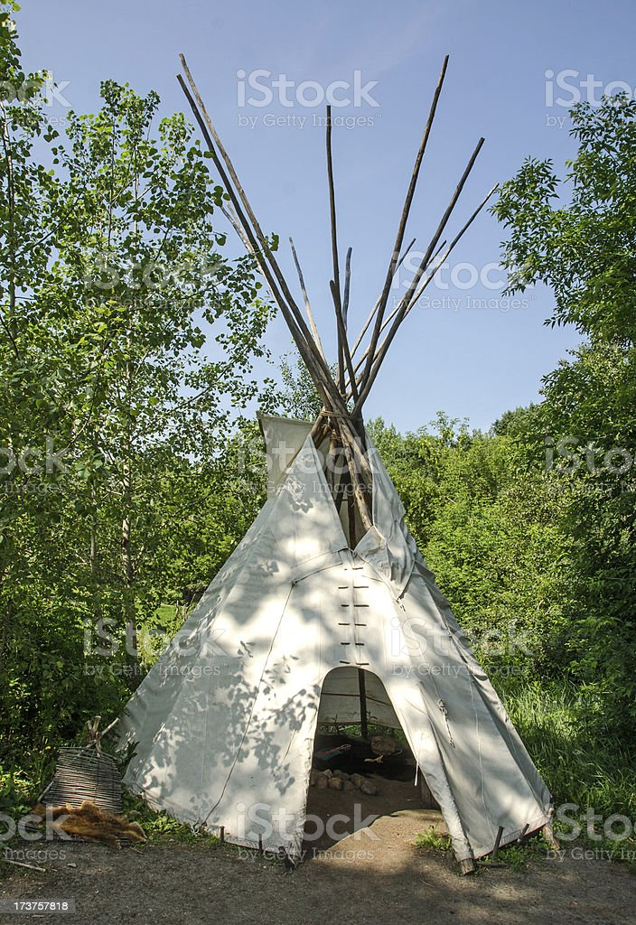 Teepee in Forest royalty-free stock photo