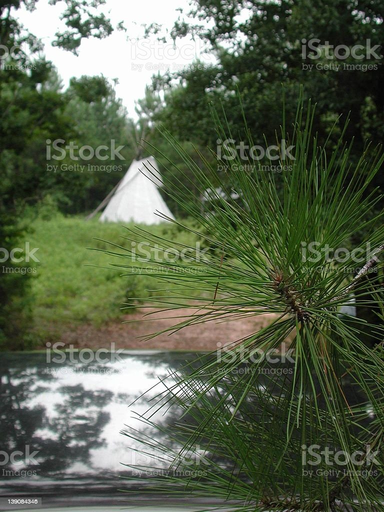 Teepee in  the Pines royalty-free stock photo