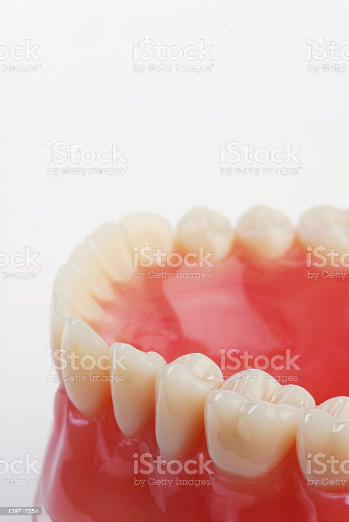 teeth 1 stock photo