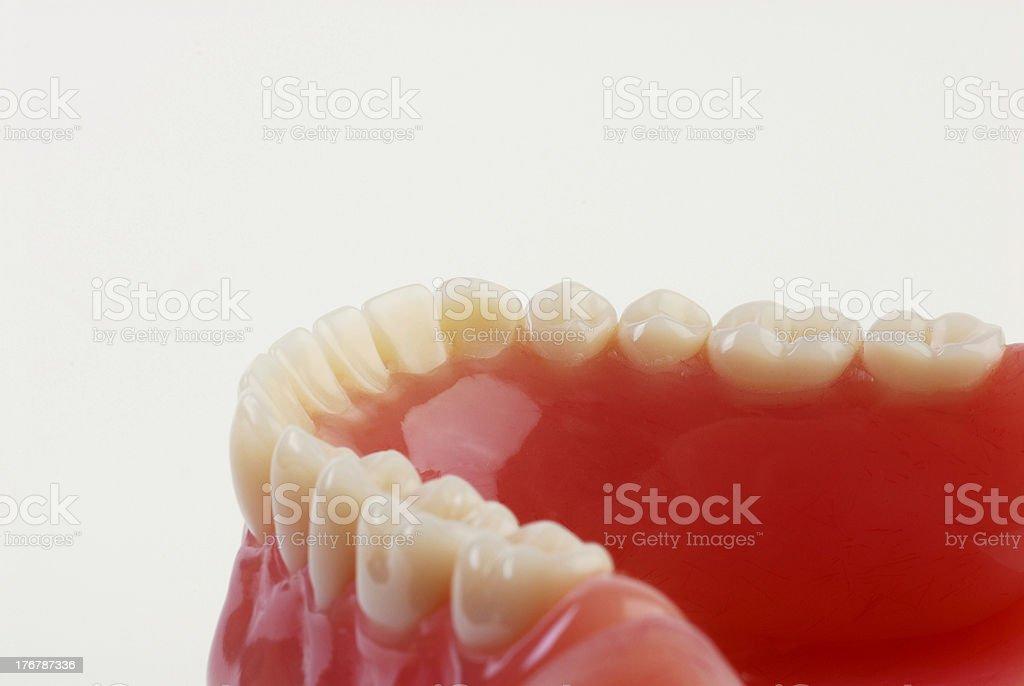 teeth 3 stock photo