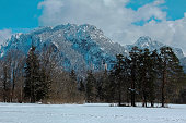 The Tegelberg and Neuschwanstein castle seen from the Schwansee area in winter.