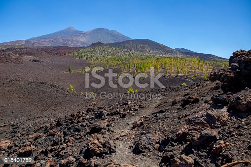 istock Teide and Pico Viejo - Tenerife 615401782