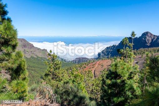 istock Teide national park landscape, Teneride, Canary islands, Spain 1204773394