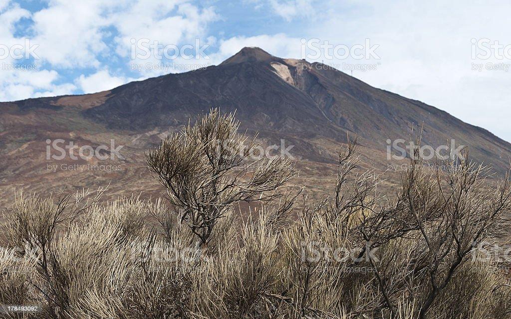 Teide volcano, Tenerife, Canary islands, Spain royalty-free stock photo