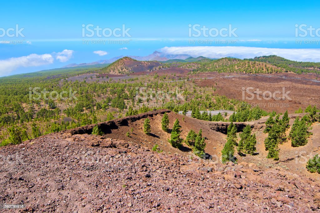 Teide's Natural park views a sunny day stock photo